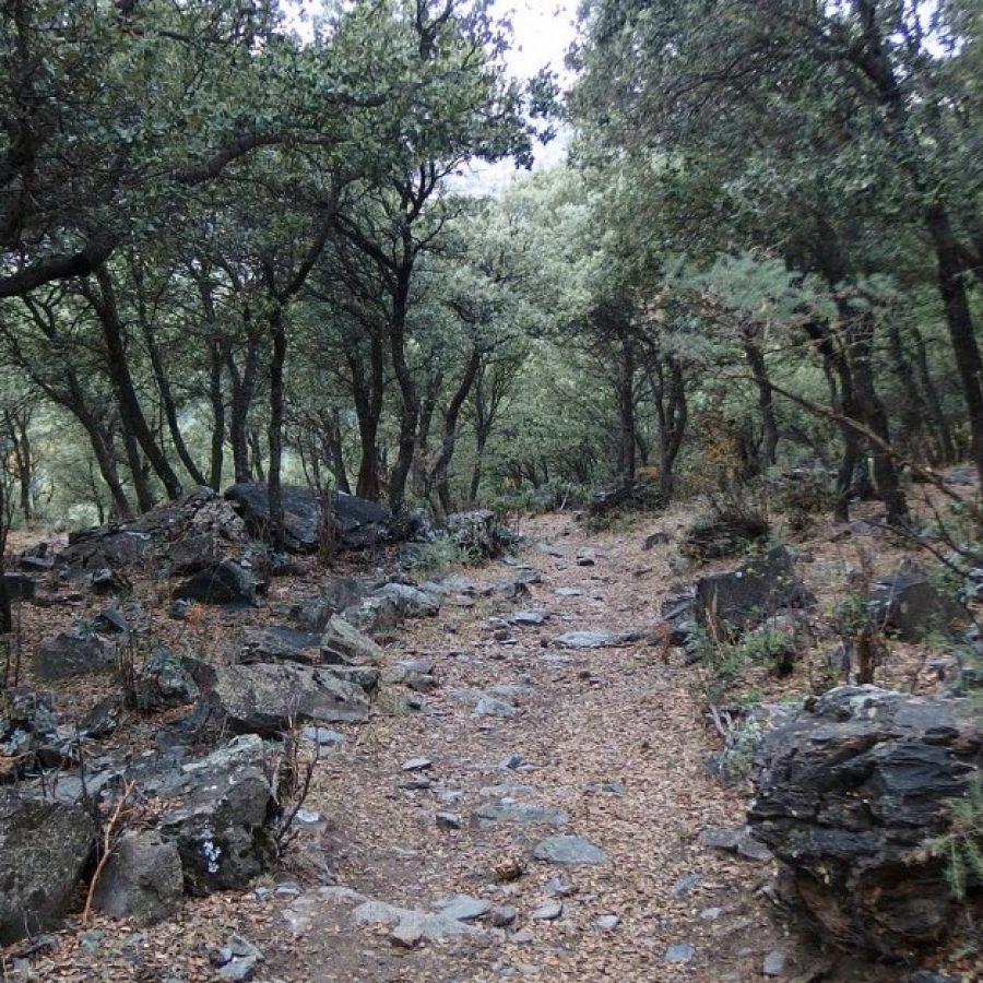 тревелес альпухарра