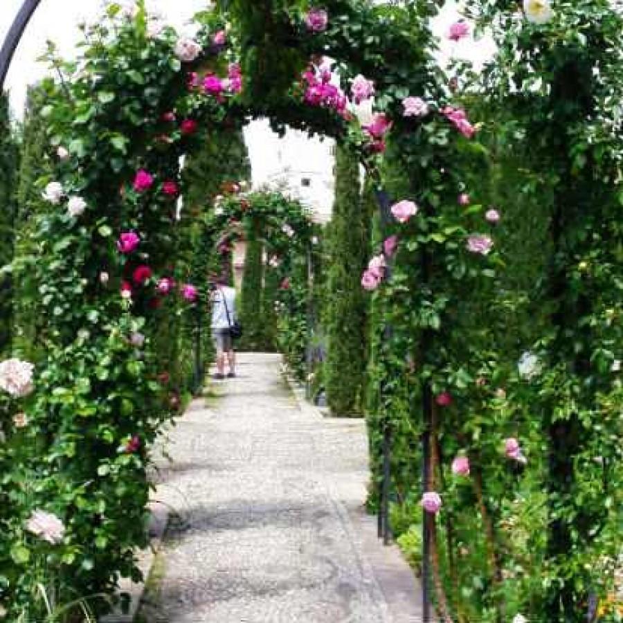 гранада сады хенералифе